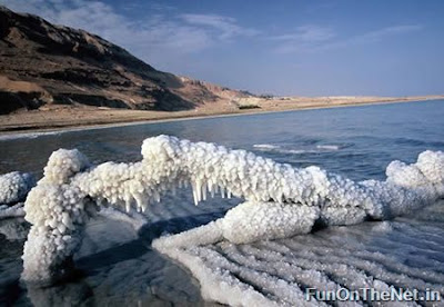 Laut Mati Sekarang Mulai Terancam Tidak Mati Lagi
