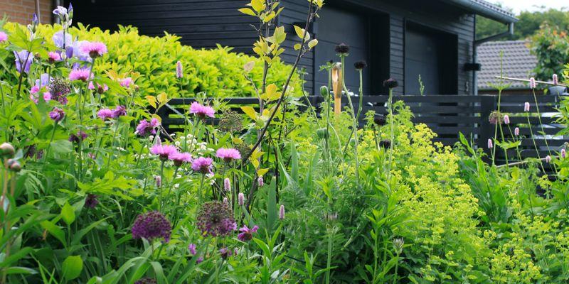 Havefolket: en sympatisk have