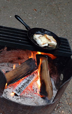 Fresh fish on the campfire.