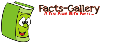 Facts Gallery