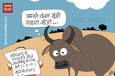 beef ban, cartoons on politics, indian political cartoon, supreme court