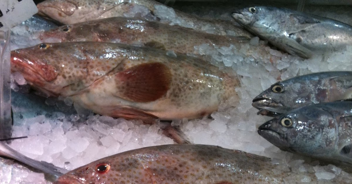 Hammour mon amour fish en counters in abu dhabi for Your inner fish summary
