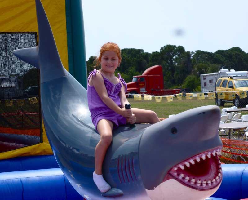 Where's Eldo?: Where Have All the Shark Teeth Gone?