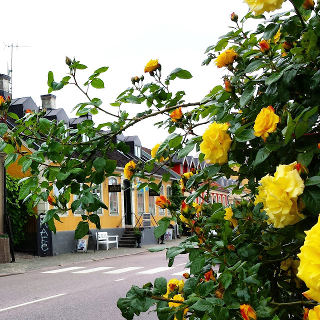 Båstad village and Swedish cottages and roses  |  Postcard from Båstad in Skåne on afeathery*nest  |  http://afeatherynest.com