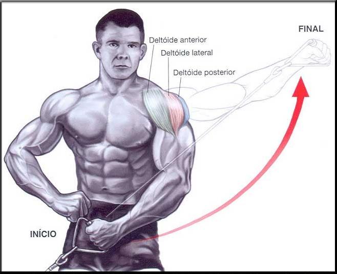 Conhecido Exercícios Para ombros – Levantamento lateral com cabo - Dicas de  ES76