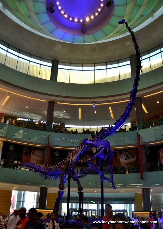 remains of an Amphicoelias brontodiplodocus at The Dubai Mall