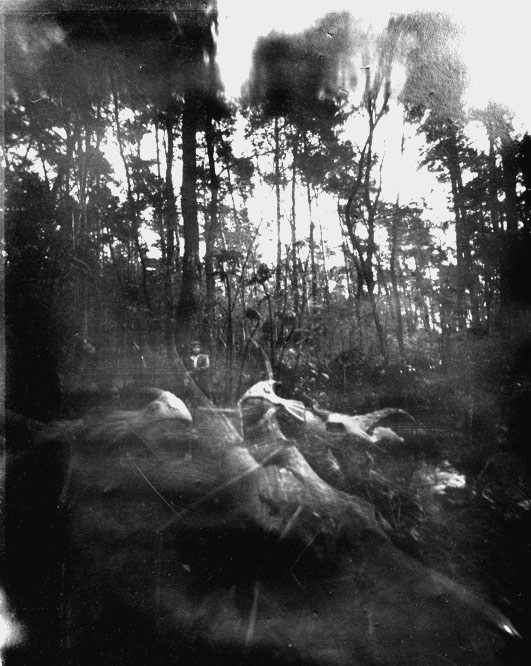 http://pinholeday.org/gallery/2015/index.php?id=486&Country=Poland