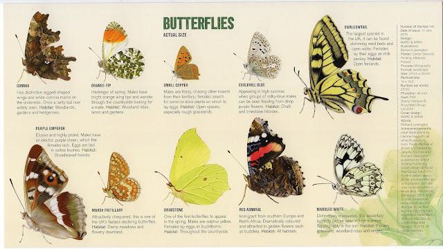 Butterfly FDC insert.