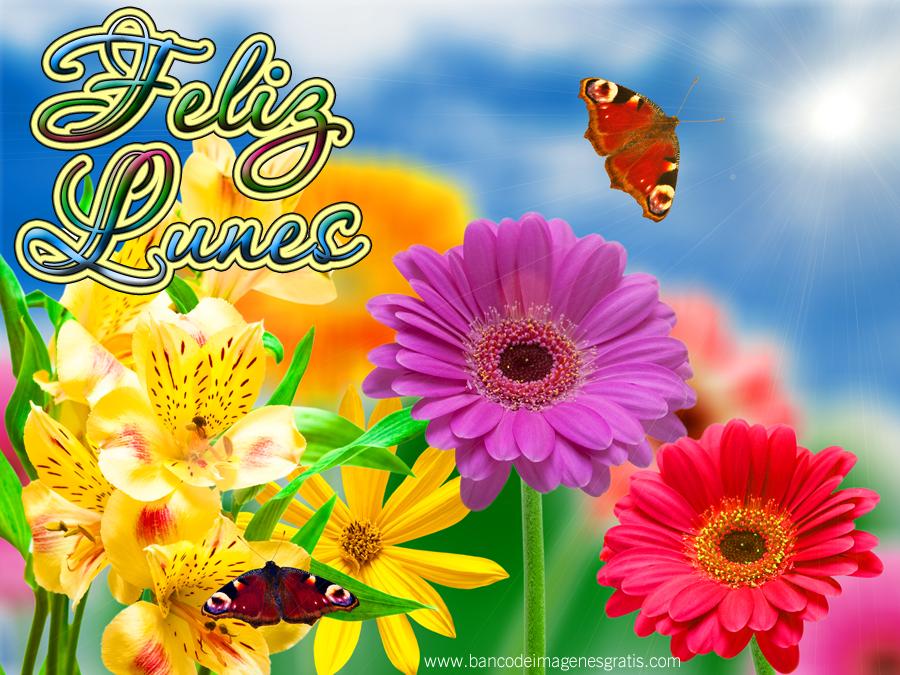 Imágenes bonitas de feliz día viernes para facebook gratis