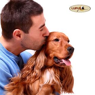 http://lupusalimentos.com.br/wp/?p=465