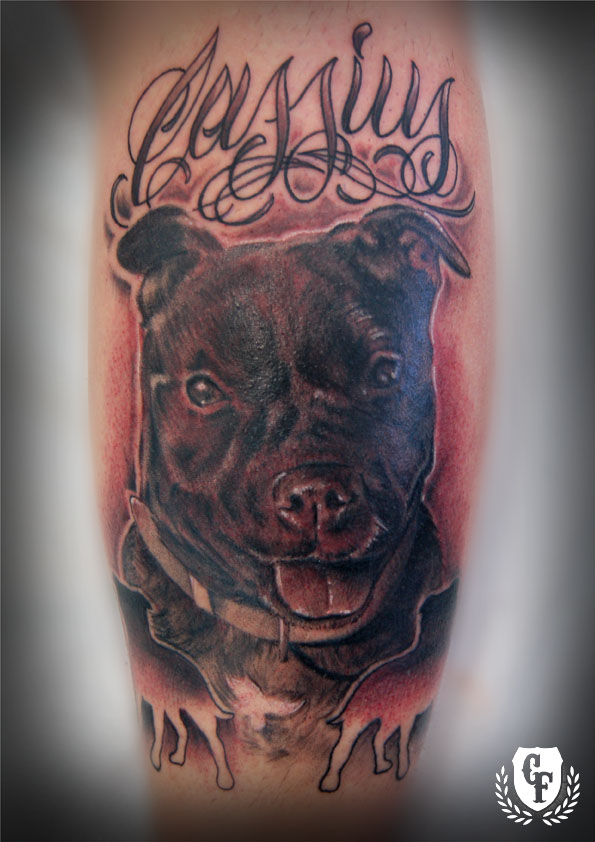 tribal bull terrier tattoo staffordshire bull tattoo terrier : retrato dog perro cassius Tatuaje