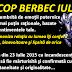 Horoscop Berbec iulie 2015