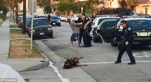 Video Animal Brutality Police Shoots Dog To Death For