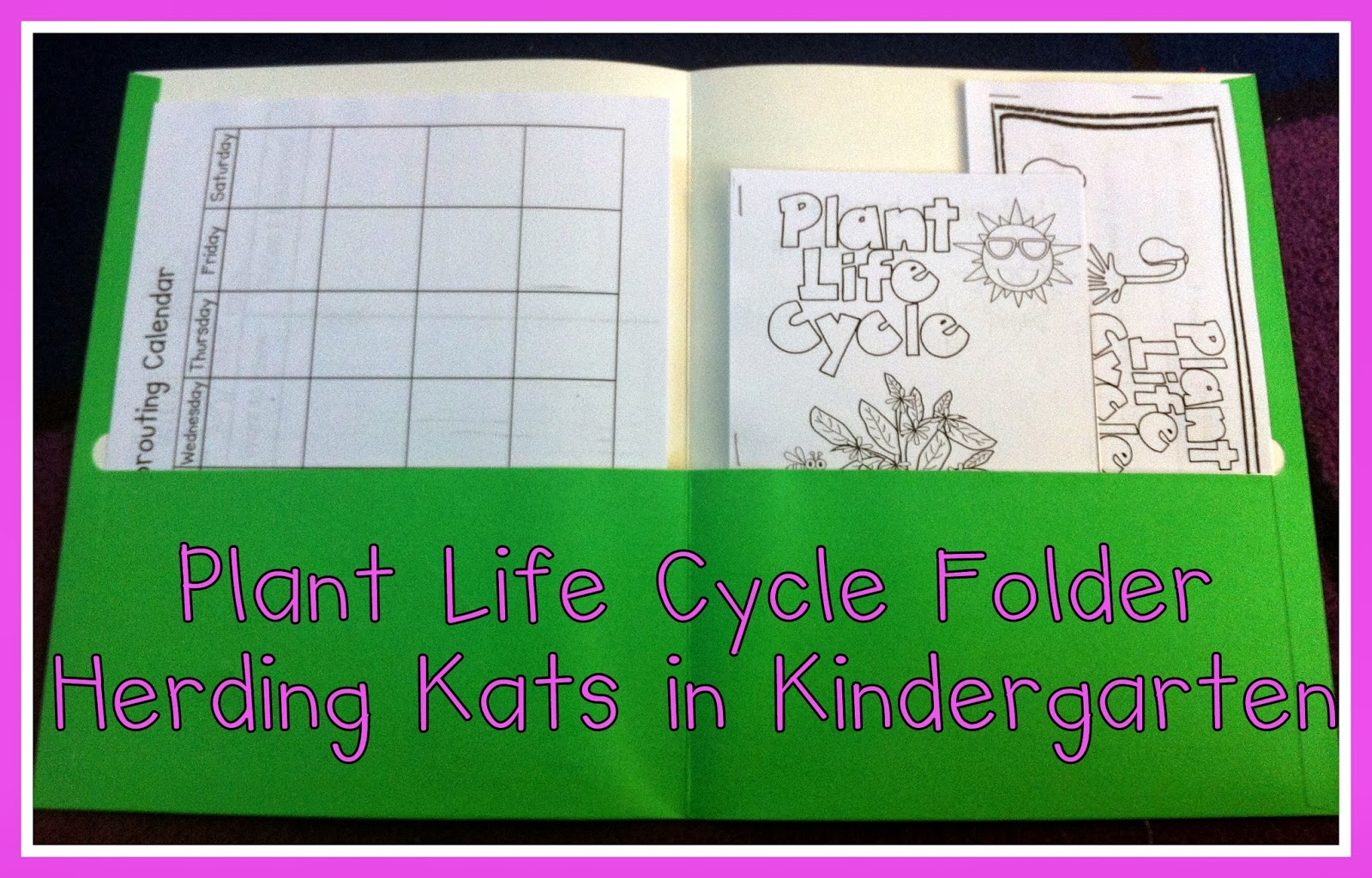 Herding Kats in Kindergarten: Plant Life Cycle Unit