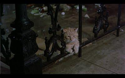 Угадай фильм по кадру Cat%2B6