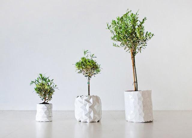 عجائب الدنيا وهل تعلم - وعاء يكبر مع نمو النبات