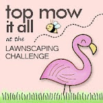 Top Mow it All #48, #49