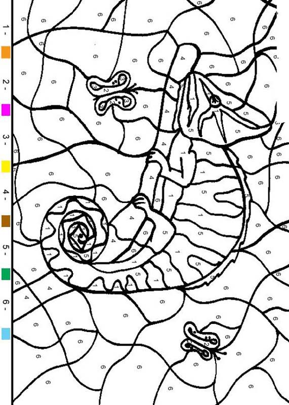 Hellokids C 3594 Coloring Pages Color By Number Animal Chameleon