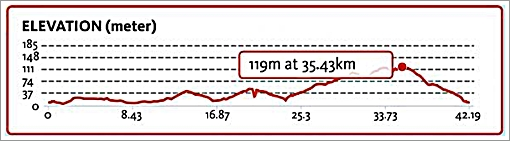 バリ マラソン 2015 レースコース☆Bali Marathon 2015 ups and downs