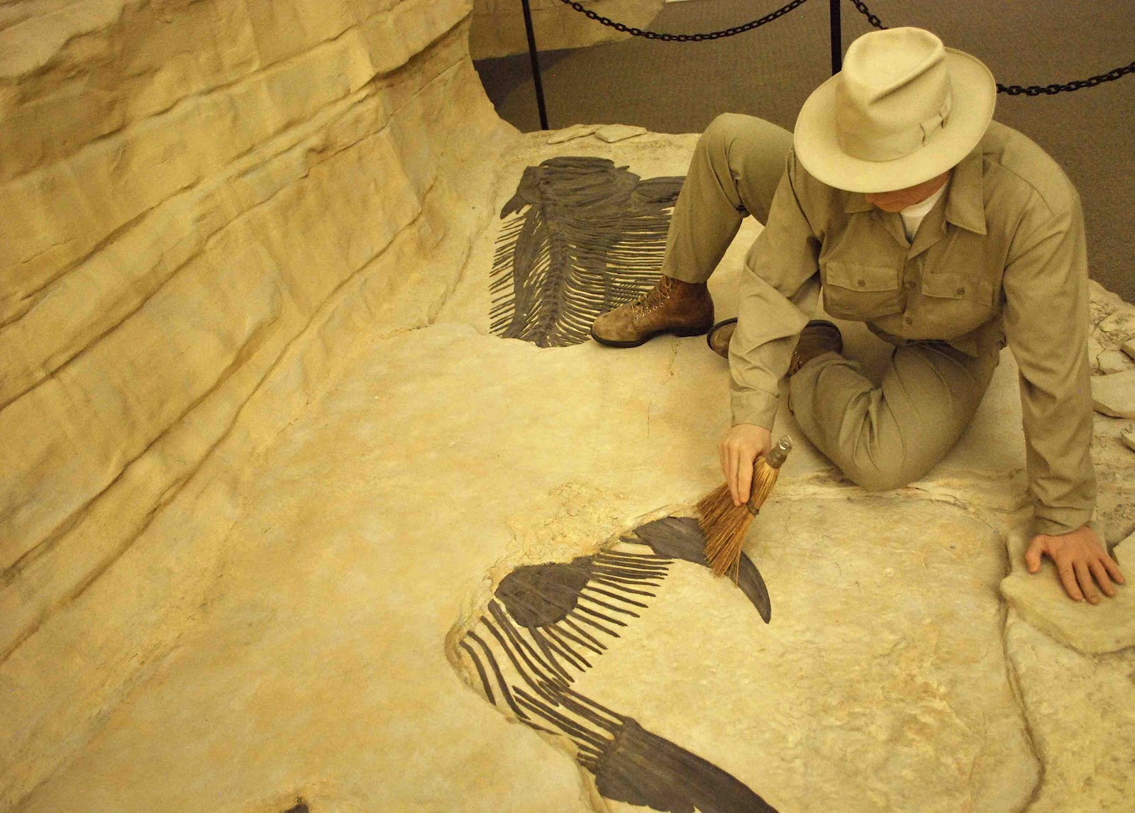 reasons for becoming a paleontologist 29 reasons you should be a scientist because there's more to life than being a wage slave if you wanna see more reasons scientists chose their careers.