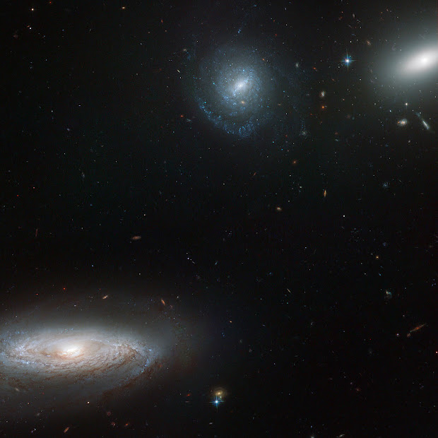 Hubble pictures part of the Hickson Compact Group 7 (HCG 7)