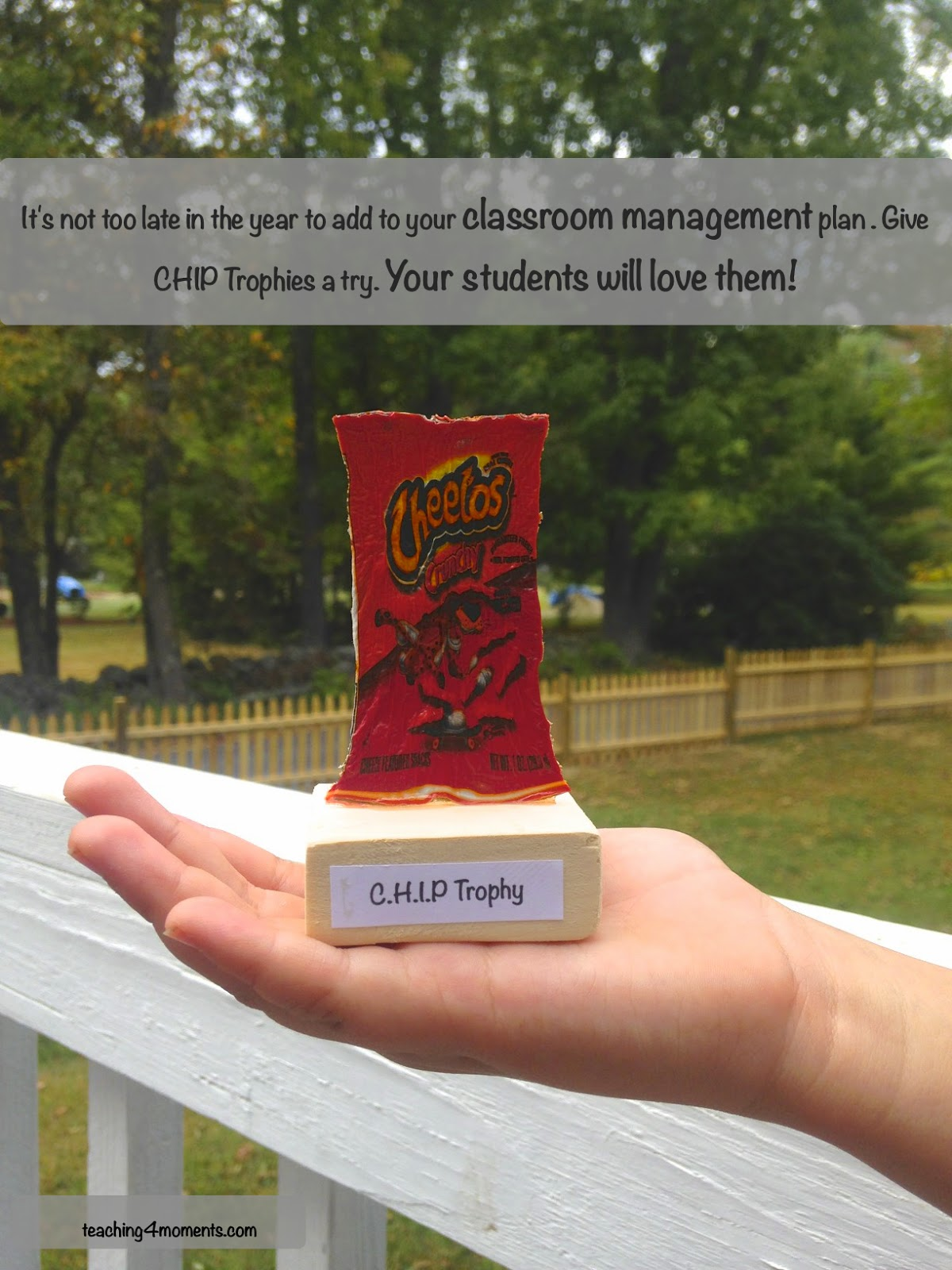 Chip Trophy is about 4inches tall.