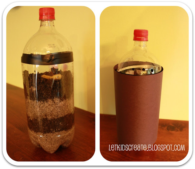 how to make a worm farm in a bottle