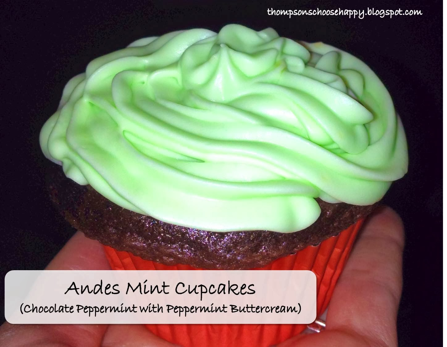 Andes Mint Cupcakes (Chocolate cupcakes with chocolate peppermint ganache and peppermint buttercream) | Choosing Happy blog