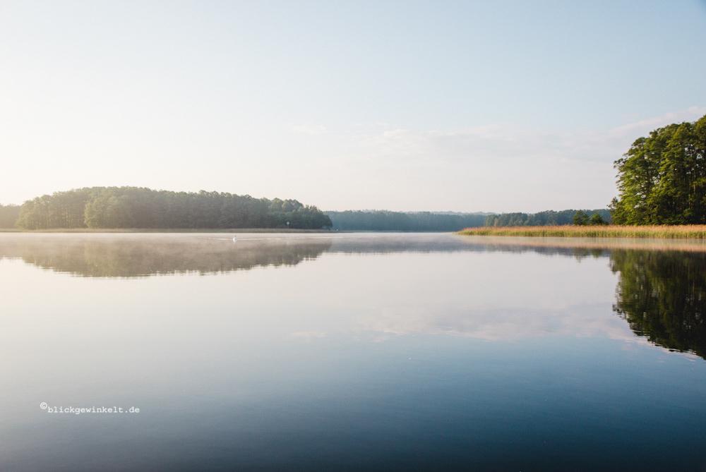 Morgennebel über See