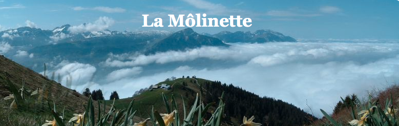 http://blog.la-molinette.info/post/2013/10/06/R%C3%A9sultats-cat%C3%A9gorie-Hommes