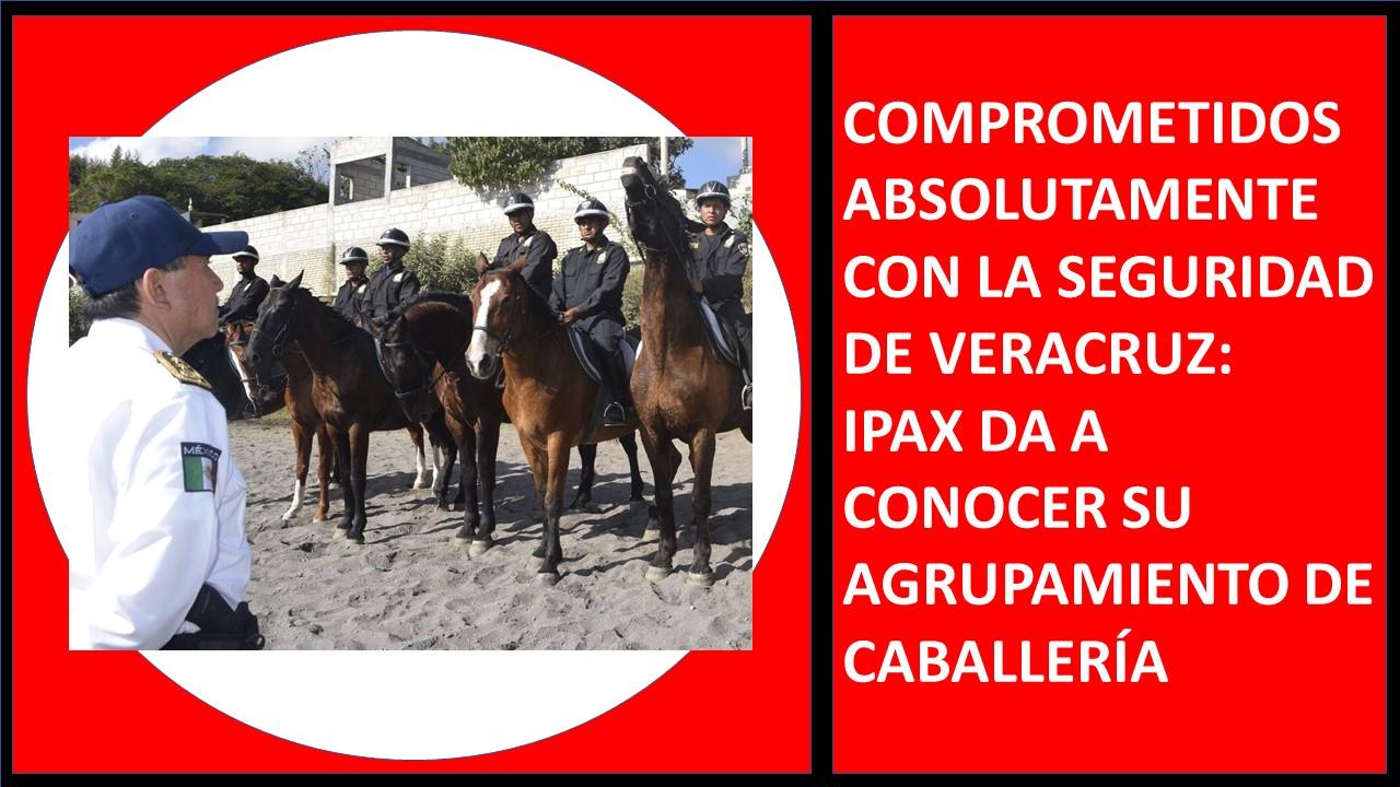 IPAX DA A CONOCER