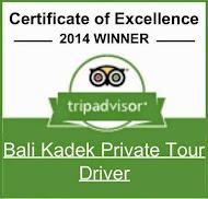 Bali Kadaek Private Tour Driver