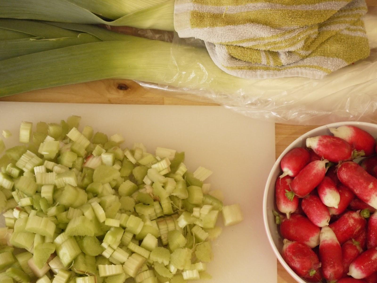 rhubarbe radis