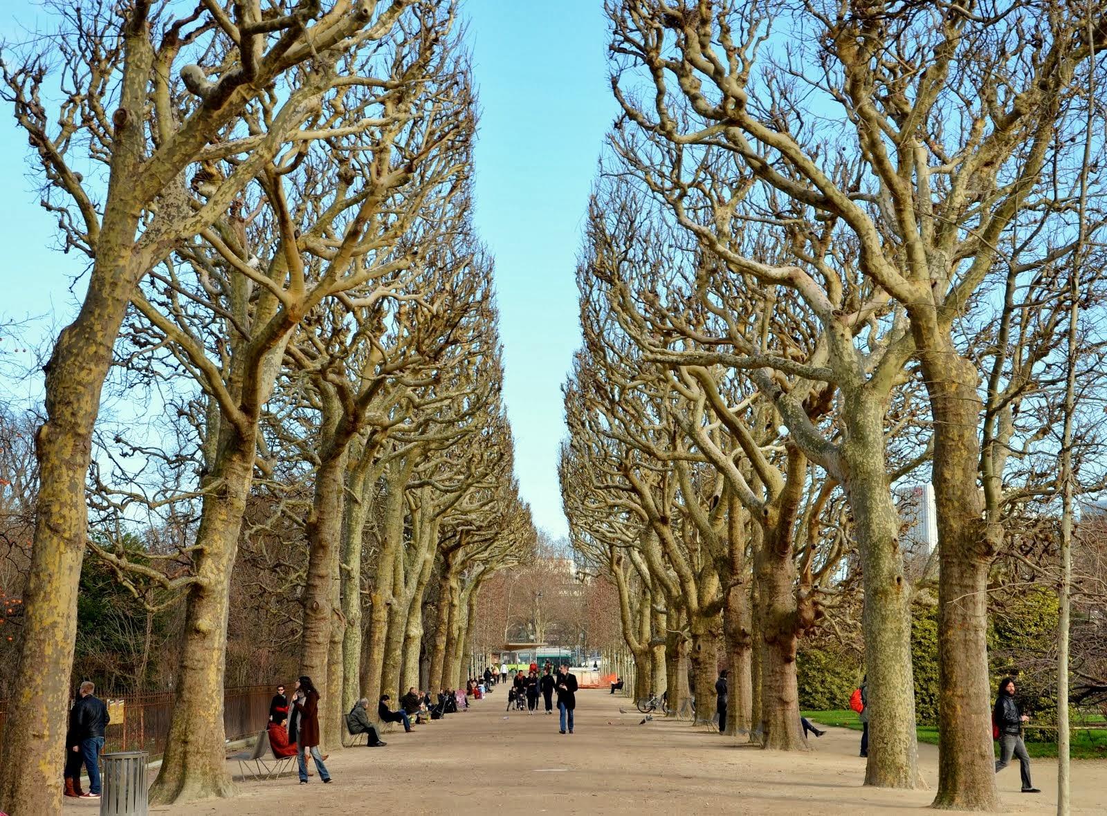 Jardin des Plantes / Paris Botanical Garden