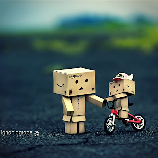 Wallpaper Danbo Kreatif