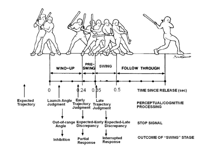 What Force Principles Are Used To Hit A Home Run In Baseball