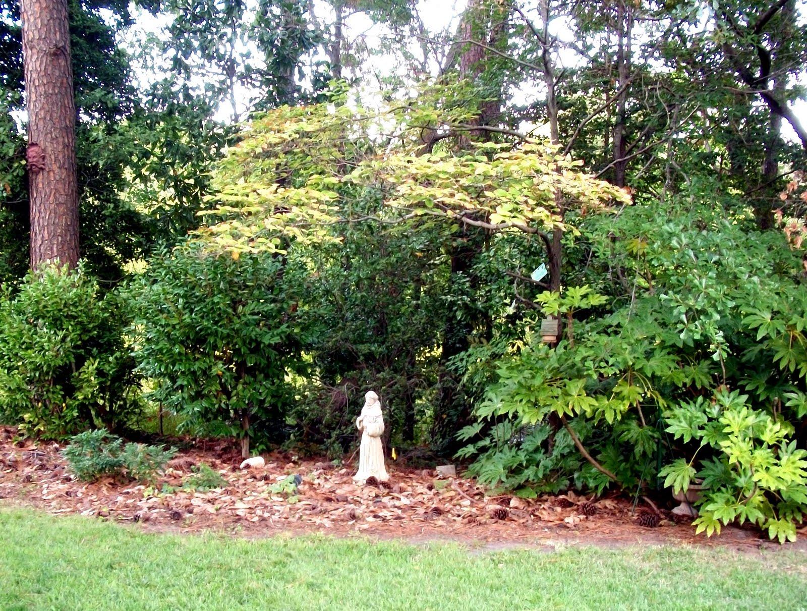 The shea terrace blog secret gardens of shea terrace part ii for 14 m4s garden terrace