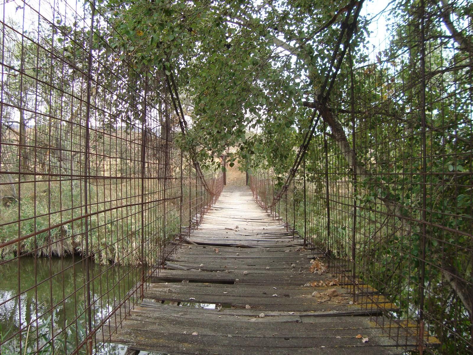 Vista interior del Puente