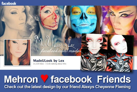 Mehron Facebook Friends
