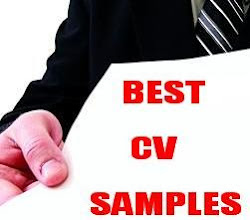 Best CV Samples