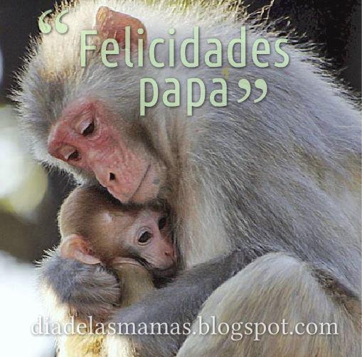feliz dia del padre dos monitos