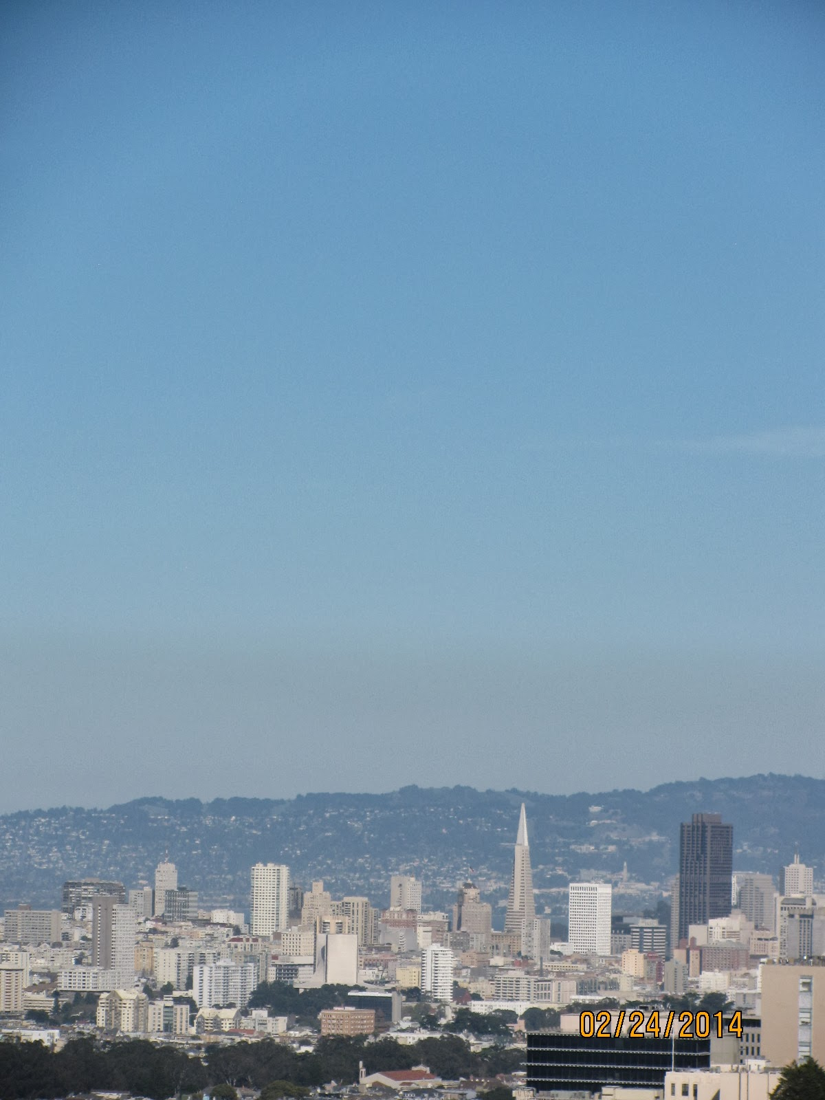 Grand View Park- Close Up of Downtown and Transamerica Building