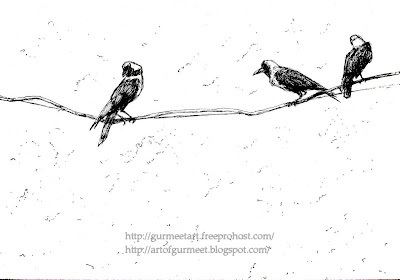 crows pen drawing by Gurmeet