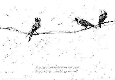 crows pen drawing by Gurmeet