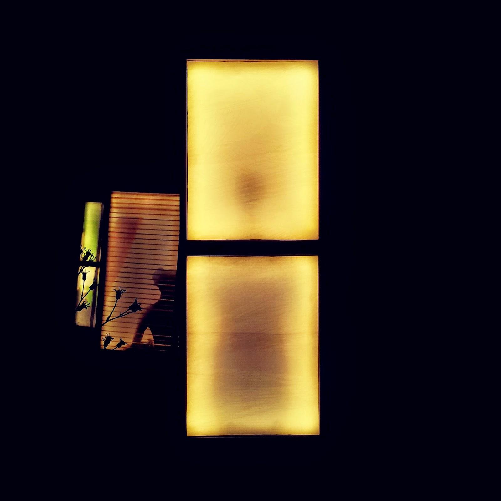 Sian por la luz de la ventana