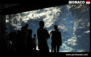 Museu Oceanogràfic Mònaco