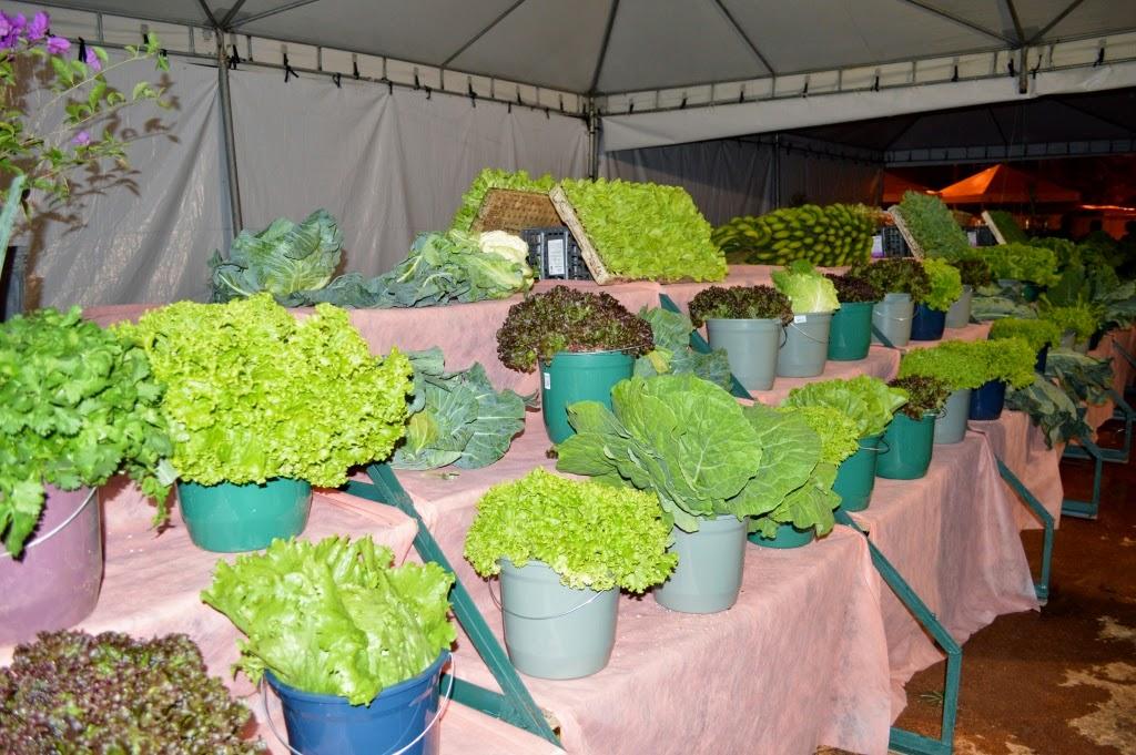 Produtos agrícolas em exposição na Feport