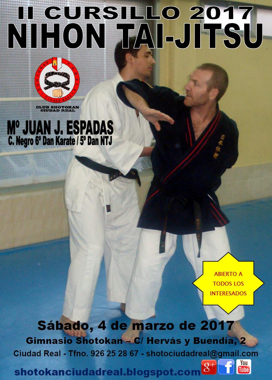 II Cursillo Nihon Tai Jitsu 2017