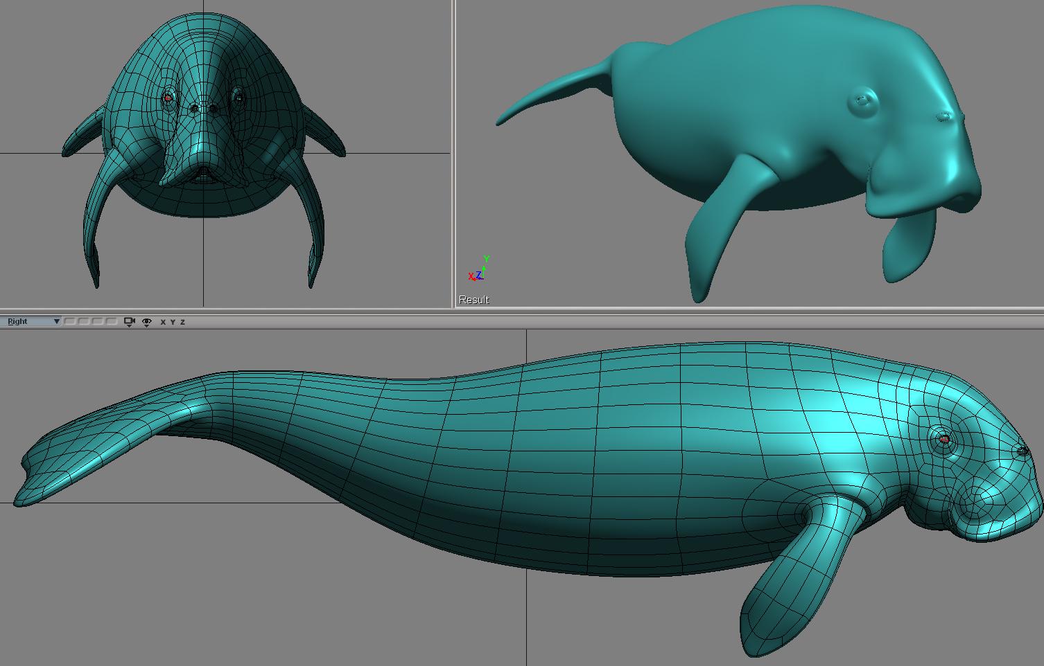 dugon01.jpg