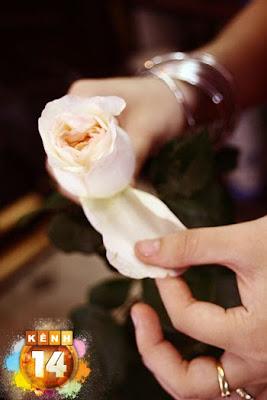 Hướng dẫn bó hoa hồng đẹp nhất